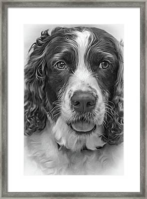 Ms Kaya 3 - Paint Bw Framed Print by Steve Harrington