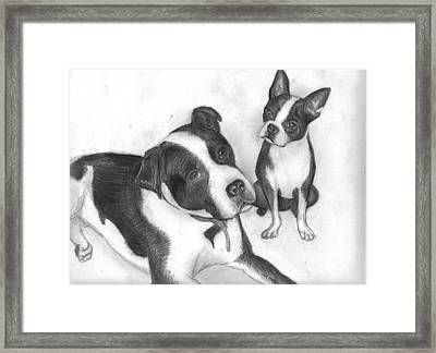 Ms Proutys Dogs Framed Print by Katie Alfonsi