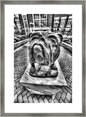 Msu Bulldog Black And White Framed Print