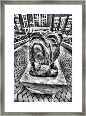 Msu Bulldog Black And White Framed Print by JC Findley
