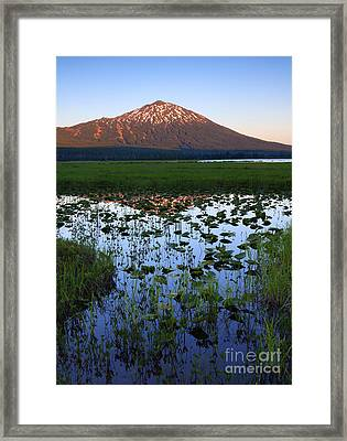 Mt. Bachelor Sunset Framed Print by Mike Dawson