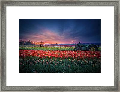 Framed Print featuring the photograph Mt. Hood And Tulip Field At Dawn by William Lee