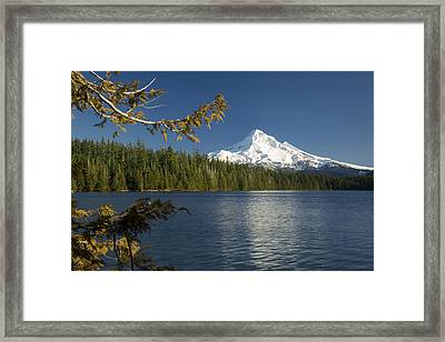 Mt Hood From Lost Lake Framed Print by Brian Jannsen
