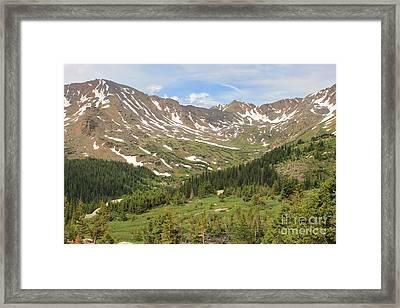 Mt. Massive Wilderness 2 Framed Print by Tonya Hance