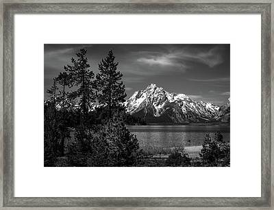 Mt. Moran And Trees Framed Print