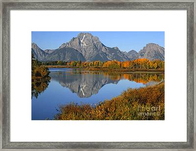 Mt. Moran Fall Reflection  Framed Print by Sandra Bronstein