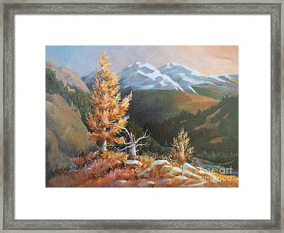 Mt. Rainier 5 Framed Print