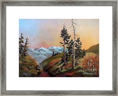Mt. Rainier 6 Framed Print