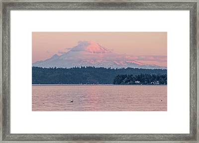 Mt. Rainier At Sunset Framed Print