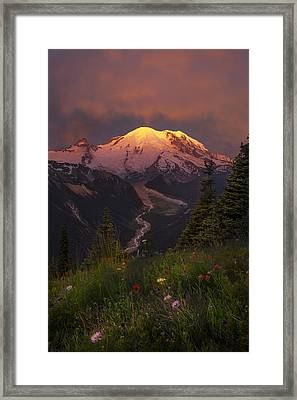 Mt. Rainier Sunrise Framed Print