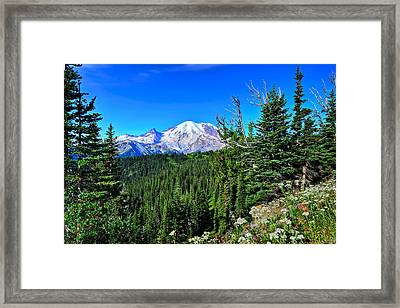 Mt. Rainier Wildflowers Framed Print
