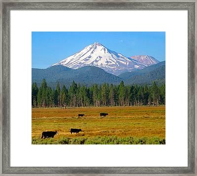 Mt. Shasta Morning Framed Print