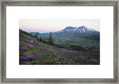 Mt. St. Helens Evening Framed Print