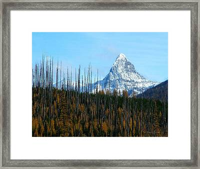 Mt St Nicolas After The Fire Framed Print