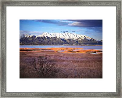 Mt. Timpanogos And Utah Lake Framed Print