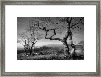 Mt Ventoux Framed Print by Robert Brown
