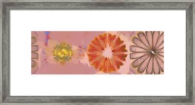 Muckworm Consistency Flower  Id 16165-001919-81620 Framed Print by S Lurk