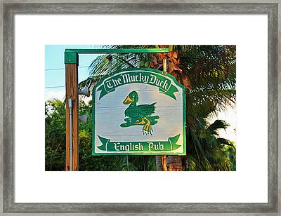 Mucky Duck I Framed Print