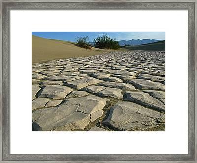 Mud Cracks Framed Print