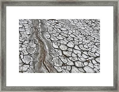 Mud Framed Print by Gabriela Insuratelu