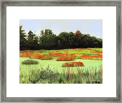 Mud Lake Marsh Framed Print