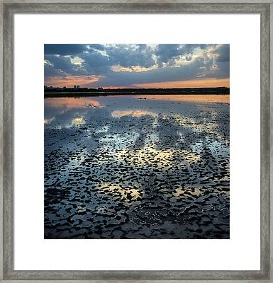 Mud Reflections Framed Print