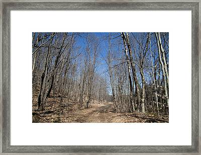 Mud Season In The Adirondacks Framed Print