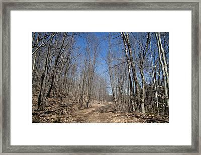 Mud Season In The Adirondacks Framed Print by David Patterson