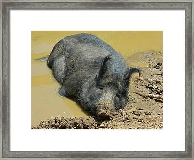 Mud Spa Framed Print