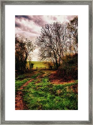Muddy Country Path Framed Print by Vicki Field
