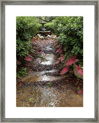 Muddy Fountain Path Framed Print by Warren Thompson