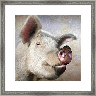 Muddy Pig Portrait Framed Print by Lori Deiter