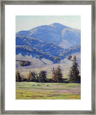 Mudgee Hills Framed Print