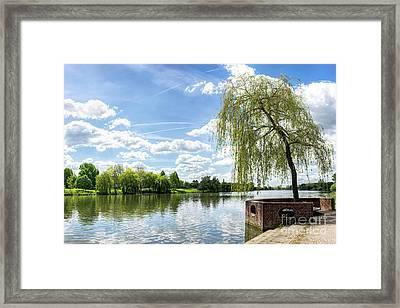 Muenster Aasee Framed Print
