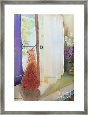 Muffin At Window Framed Print