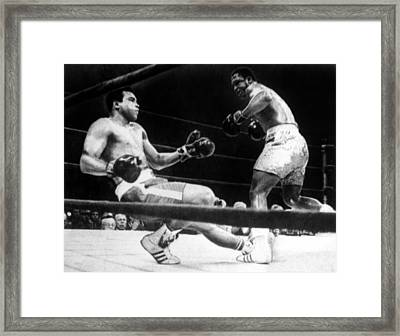 Muhammad Ali Knocked Down By Joe Framed Print
