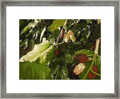 Mulberry Moment Framed Print