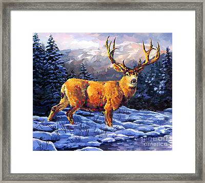 Mule Deer 2 Framed Print