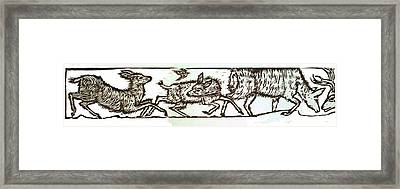 Mule Deer Family Framed Print