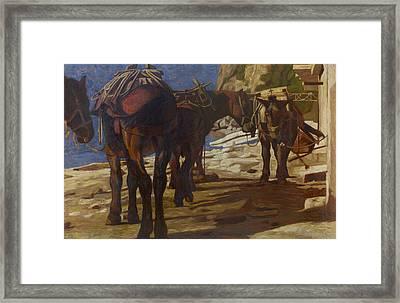 Mules 1 Framed Print