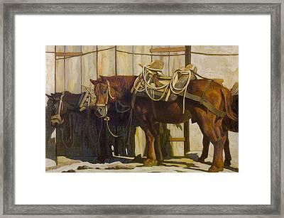 Mules 2 Framed Print