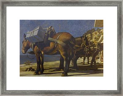 Mules Framed Print