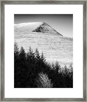 Mull Trees And Peak Framed Print by Dave Bowman