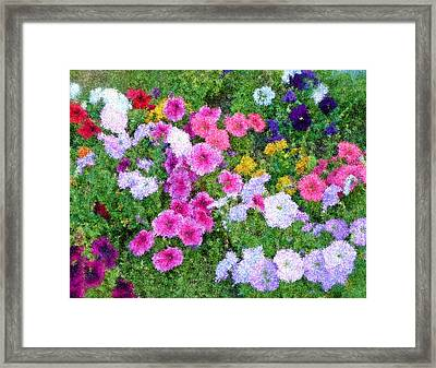 Multi Color Flowers Framed Print by Ralph Liebstein