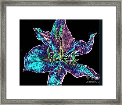 Multi-color Lily - Digital Painting Framed Print by Merton Allen
