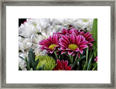 Multi Colored Array Framed Print