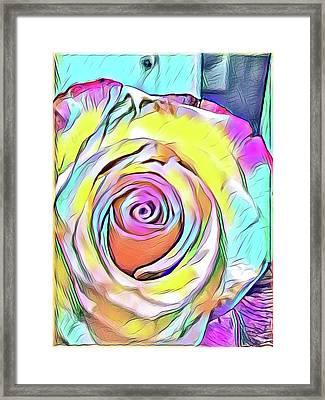 Multi-colored Rose Framed Print