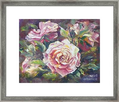 Multi-hue And Petal Rose. Framed Print