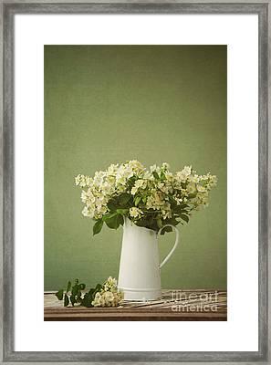 Multiflora Rose In A Rustic Vase Framed Print by Diane Diederich