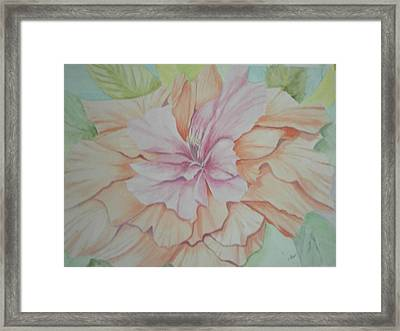 Framed Print featuring the painting Multipetaled Pink Coral Hibiscus by Hilda and Jose Garrancho